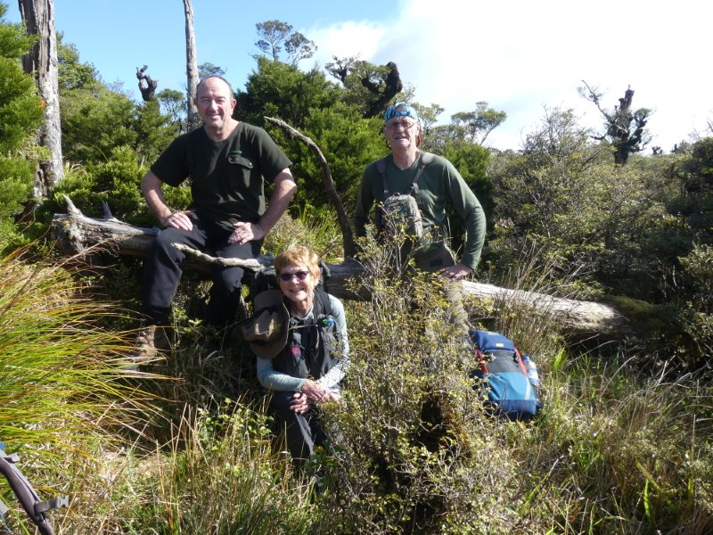 Three people on the disused North South Kaimai track swamp area